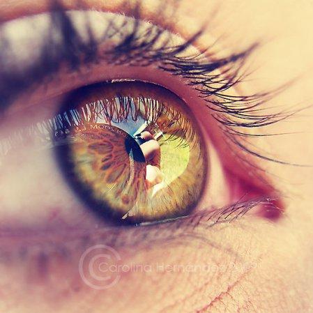 2821129-2-world-through-your-eyes-1