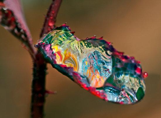 3025995-2-acid-rain